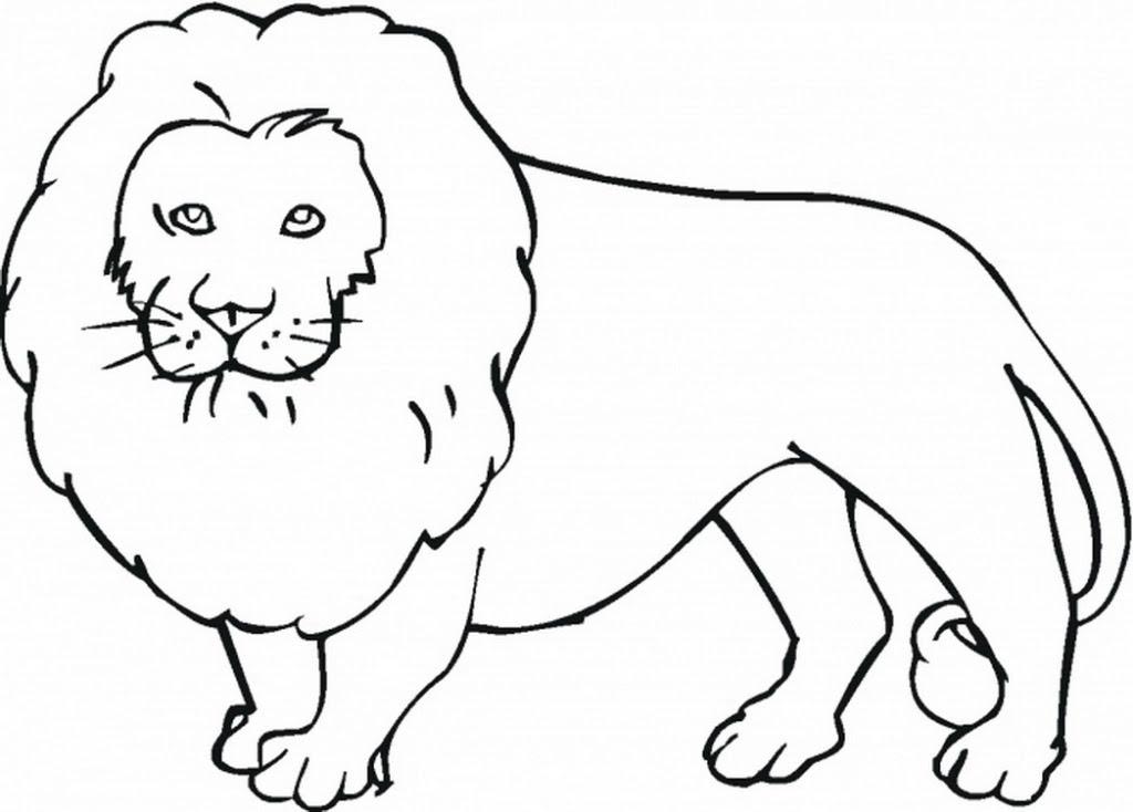 Animals Drawing at GetDrawings   Free download