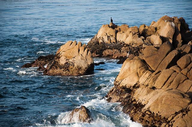 california 2013-37