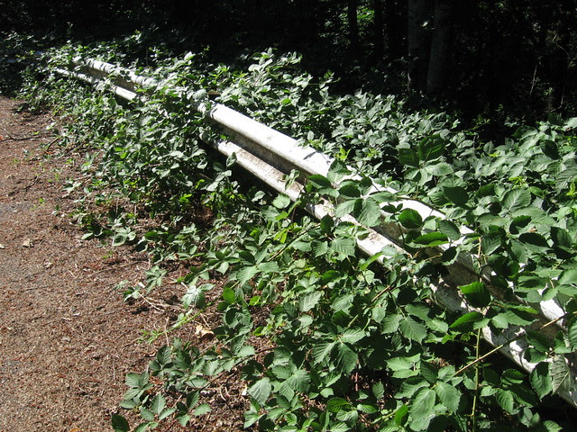 Guardrail, Kelly Butte