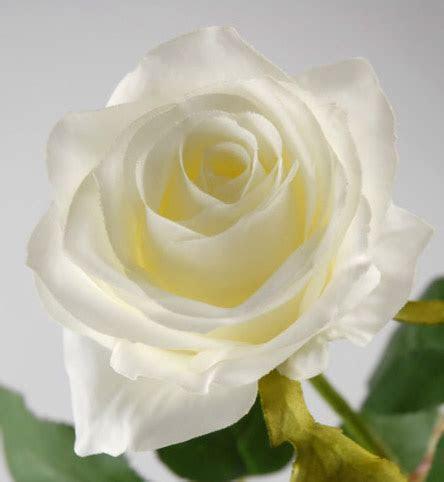 """Cream White Long Stem Silk Roses 27"""""""