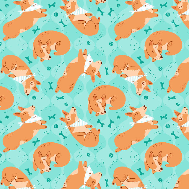 Daily Pattern: Dog Accessories