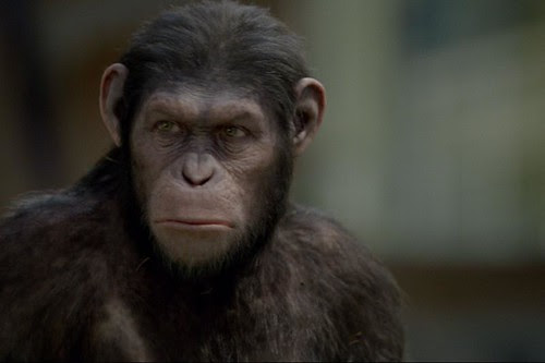 rise of the planet of apes_
