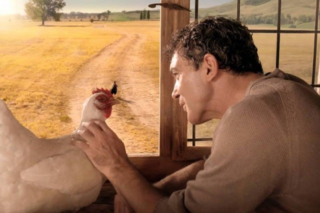 http://static.fanpage.it/wp-content/uploads/sites/19/2015/07/banderas-gallina-638x425.jpg