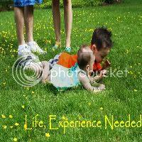 Life, Experience Needed