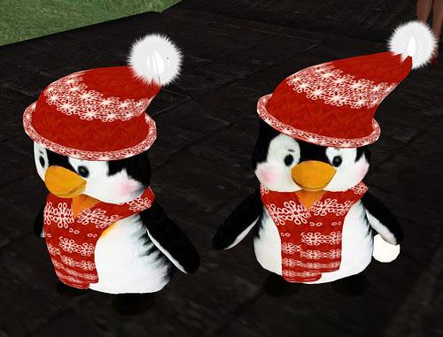 20101220 Fierce penguins