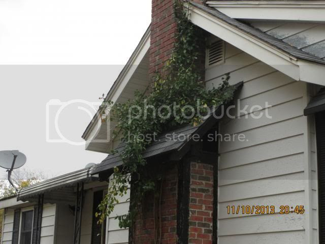 remaining vine on chimney photo IMG_0333-Copy2_zps893039d8.jpg