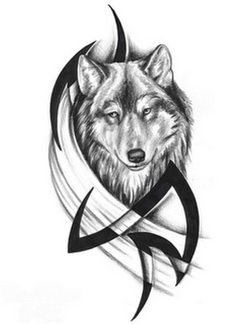 Tribal N Wolf Head Tattoo Sample Tattoos Book 65000 Tattoos Designs