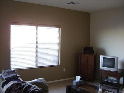 We Painted a Brown Statement Wall in Our Living Room