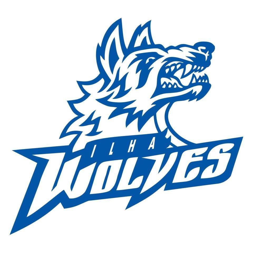 Modern Logo Design for Summer Basketball League ...