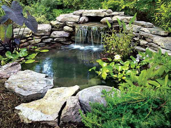 9 Relaxing DIY Outdoor Ponds | Shelterness