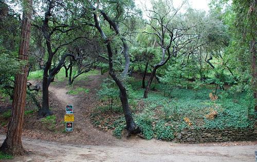 A Gabrielino Indian Site