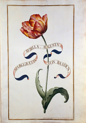 German Tulip Book - 18th century