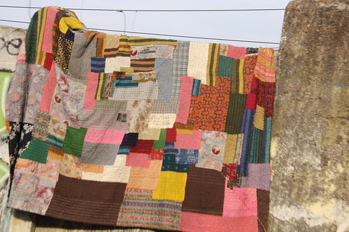 the poor mans winter quilt .. wont wither wont wilt by firoze shakir photographerno1