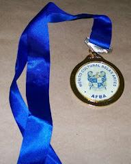 Medalha ao merito Cultural premio da      camara Municipal de Niteroi