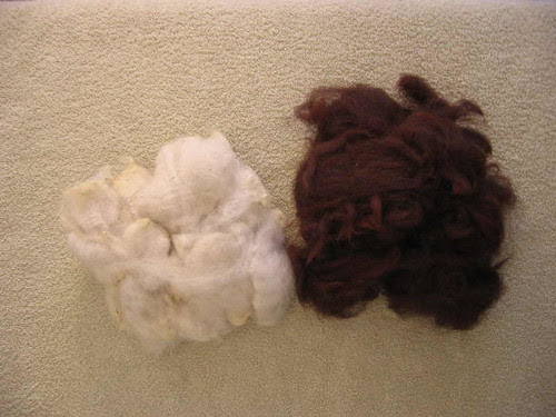 Cream Shetland and mahogany Fudgy alpaca