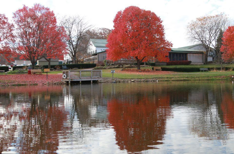 Image result for whitehouse fruit farm