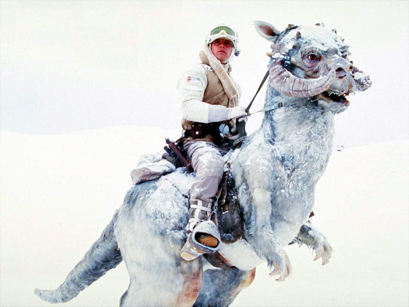 Luke Skywalker riding his tauntaun on Hoth, from Star Wars.