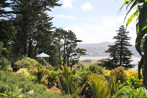 Larnach-Castle-Dunedin-NZ_25