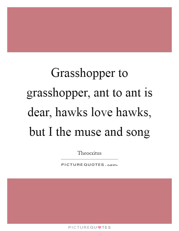 Grasshopper To Grasshopper Ant To Ant Is Dear Hawks Love Picture Quotes