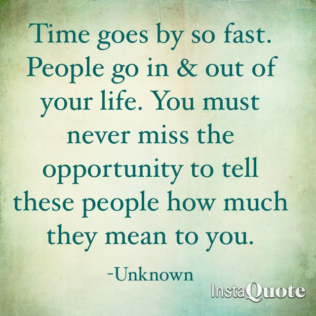 Quotes About Time Goes 223 Quotes