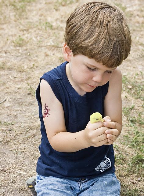 oliver-chick-1