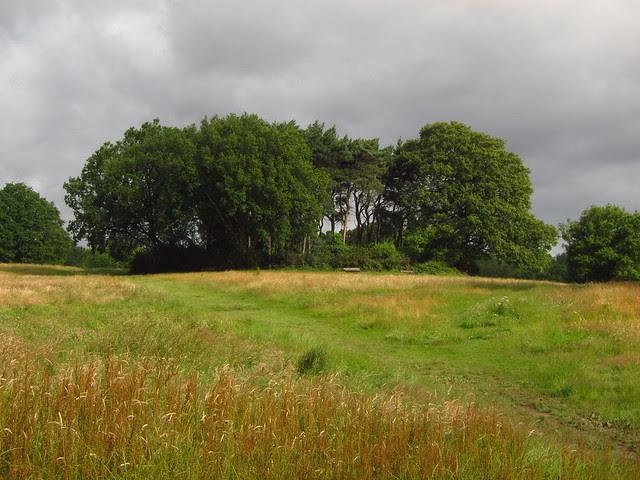 The Tumulus, Hampstead Heath
