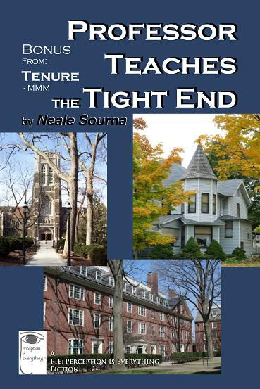 ebook cover Professor Teaches the Tight End