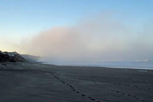 Oregon Coast 19