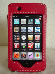 iPod touch - My PDA.