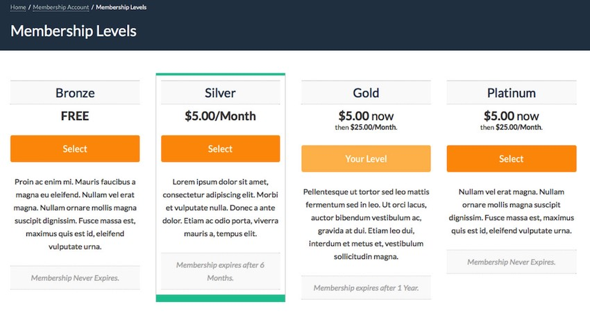 Paid membership Pro plugin can add other sources of income to your website