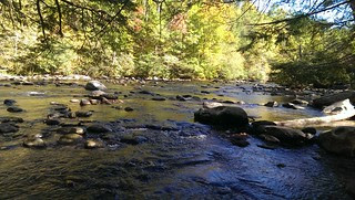 My favorite creek as it goes through the Smoky Mountains