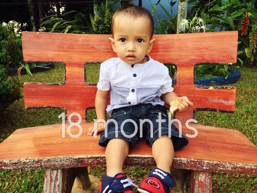 Hanif 18 months