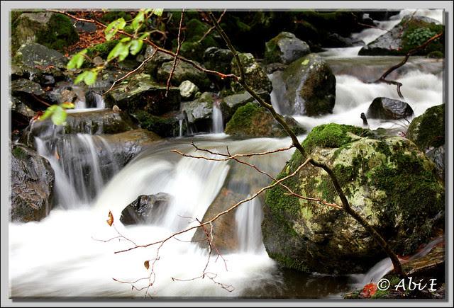 4 río Urbión