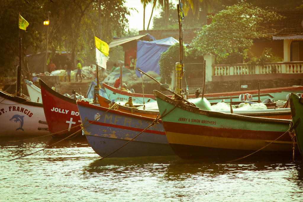 Goa - India - -39