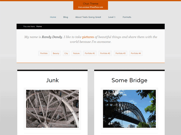 Chun Free WordPress Theme