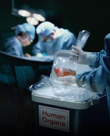 Un corazón donado para un trasplante.