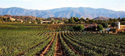 Reyes Winery   Agua Dulce CA   Rustic Wedding Guide