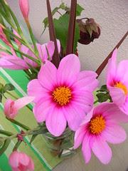 Daniel's bouquet