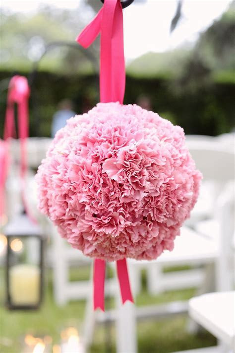 62 best images about Carnations are Making a Come Back