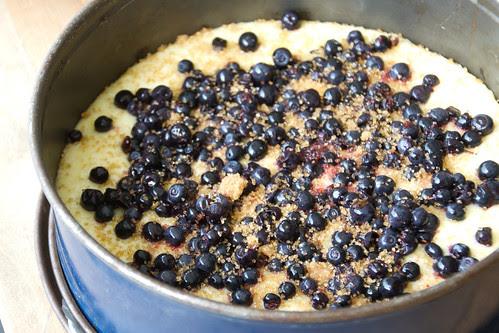 Coconut blueberry cake / Mustikakook kookoshelvestega