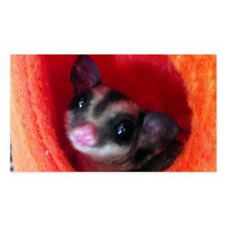 Sugar Glider in Orange Hanging Bed Business Card Templates