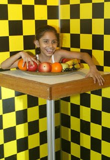 Girl head on a plate illusion