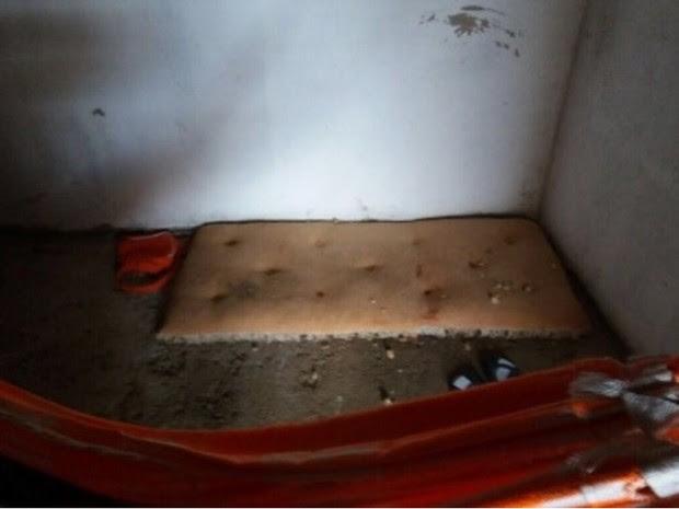 Abrigo clandestino que funcionava em condições insalubres (Foto: Divulgação/SSPDS)