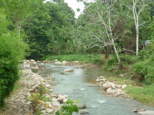 Chemperoh River at Saujana Janda Baik