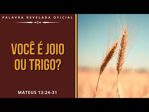 Você é trigo ou joio?