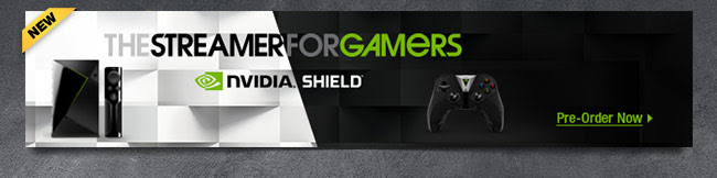 Nvidia - The Streamer for Gamers