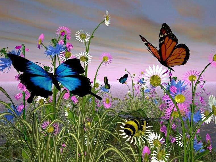 http://p6.storage.canalblog.com/62/18/1015586/83797046_o.jpg