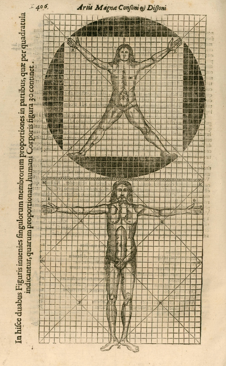 two male bodies in segmented proportions