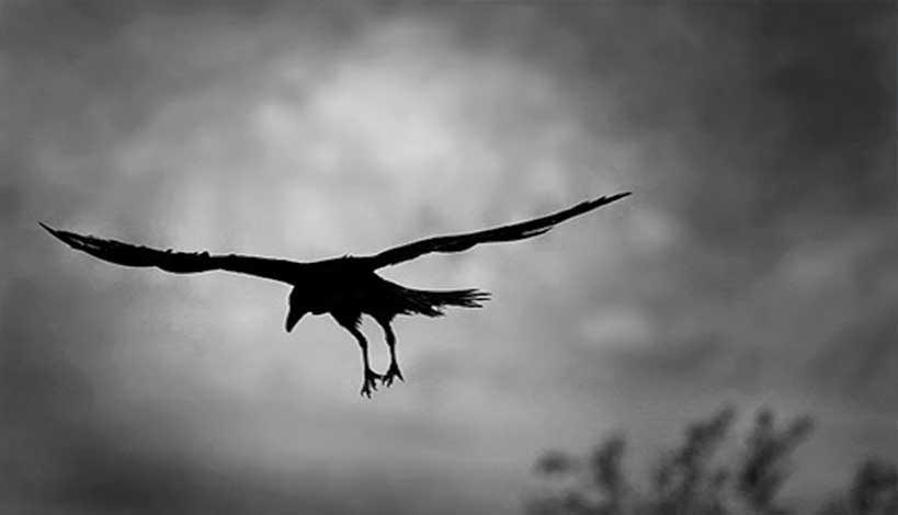 Αρχιμ. Βασίλειος Μπακογιάννης: «Με οδηγό τα κοράκια»