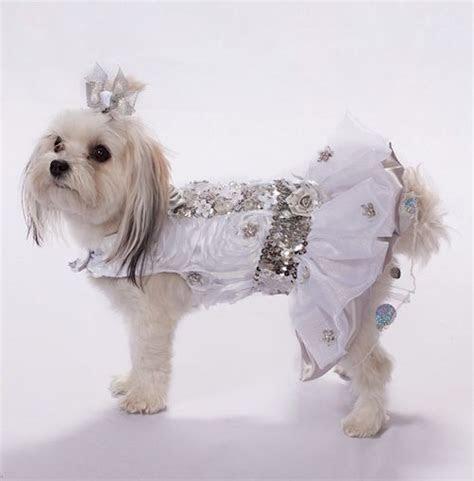 Dog Wedding Dress   www.theclassydog.com Luxury Dog